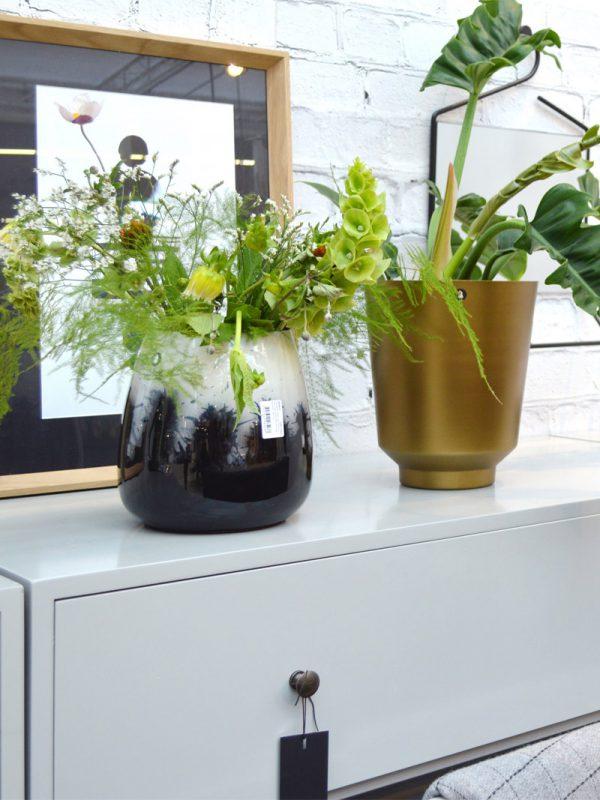 1-megatrend-pflanzen-green-living