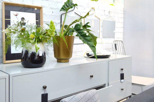 pflanzen-mega-trend-green-living-1