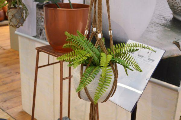 pflanzen-mega-trend-green-living-2