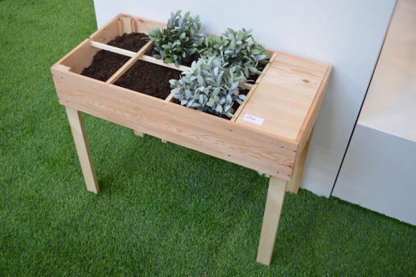 pflanzen-mega-trend-green-living-3